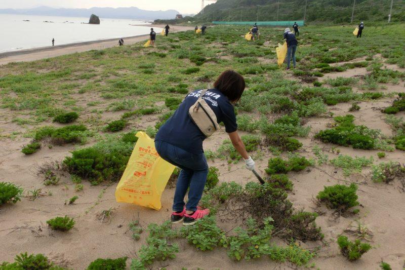 持石海岸清掃